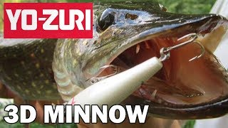 Yo-zuri воблер r725 3d minnow 100sp 100mm 17. 0g