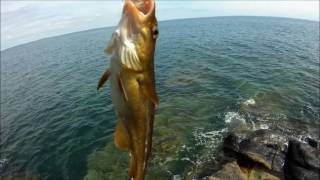 Fishing in Bulgaria on lakes and at sea