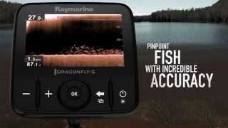 Raymarine dragonfly sonar gps with gold charting