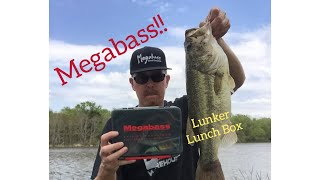 Бокс для приманок megabass lunker lunch box slim shl