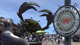 The locals guide to Fisherman's Wharf, San Francisco