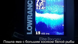 Lowrance elite 3x dsi fishfinder manual