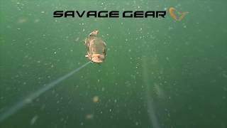 Мягкая приманка savage gear 3d line thru pike