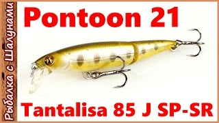 Воблер pontoon 21 tantalisa 100 sp
